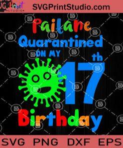 Paitane Quarantined On My 17th Birthday SVG, Birthday Quarantined SVG, Birthday Kid 2020 SVG