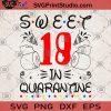 Sweet 18 In Quarantine SVG, Quarantine 2020 SVG, Covid 19 SVG, Birthday SVG, Sweet 18 SVG, Coronavirus SVG, Toilet Paper SVG