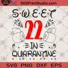 Sweet 22 in quarantine SVG, Quarantine 2020 SVG, Covid 19 SVG, Birthday SVG, Sweet 22 SVG, Coronavirus SVG, Toilet Paper SVG